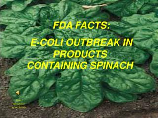 FDA FACTS:   E-COLI OUTBREAK IN PRODUCTS CONTAINING SPINACH