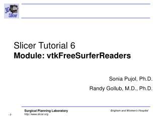 Slicer Tutorial 6  Module: vtkFreeSurferReaders