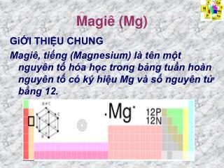 Magi  Mg
