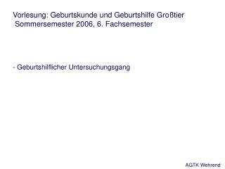 Vorlesung: Geburtskunde und Geburtshilfe Gro tier  Sommersemester 2006, 6. Fachsemester    - Geburtshilflicher Untersuch