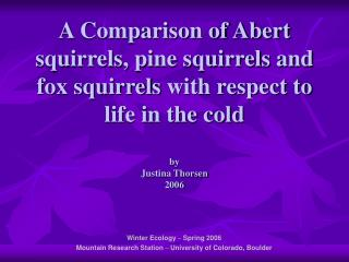 A Comparison of Abert squirrels
