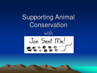Supporting Animal Conservation with