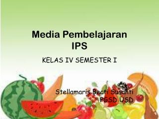 media IPS