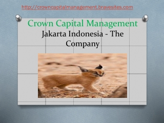 Crown Capital Eco Management Company