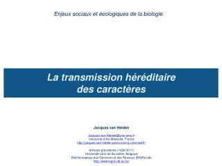 La transmission h r ditaire  des caract res