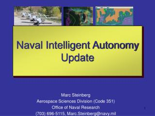 Marc Steinberg Aerospace Sciences Division Code 351 Office of Naval Research 703 696-5115, Marc.Steinbergnavy.mil