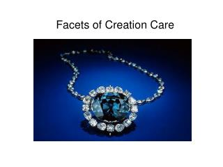 Facets of Creation Care