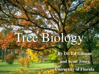 Tree Biology