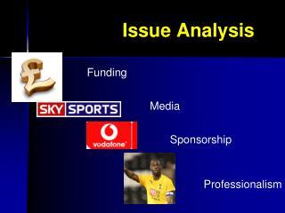 Issue Analysis