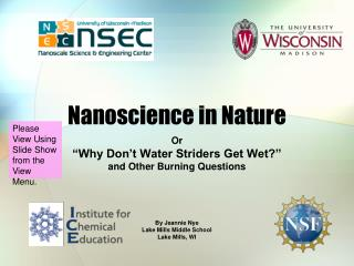 Nanoscience in Nature