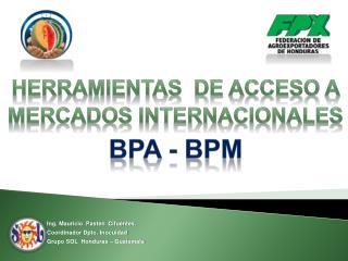 Herramientas  de Acceso A  Mercados Internacionales BPA - BPM