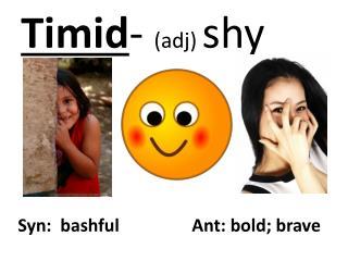 Timid- adj shy