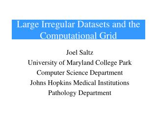 Large Irregular Datasets and the Computational Grid