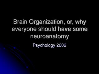 Brain Organization, or, why everyone should have some neuroanatomy