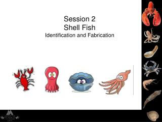 Session 2 Shell Fish  Identification and Fabrication