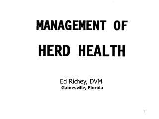 Ed Richey, DVM  Gainesville, Florida