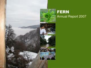 FERN Annual Report 2007