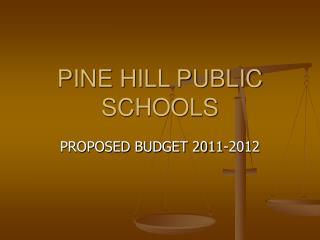PINE HILL PUBLIC SCHOOLS