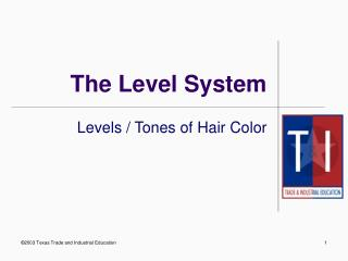 The Level System