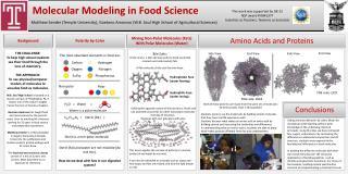 Molecular Modeling in Food Science