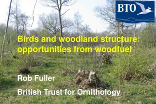 Birds and woodland structure: opportunities from woodfuel