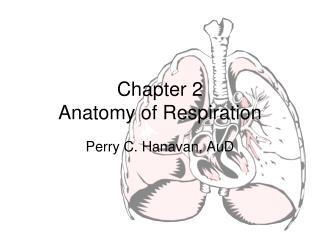 Chapter 2 Anatomy of Respiration
