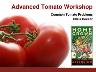 Advanced Tomato Workshop