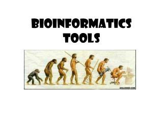 Bioinformatics Tools