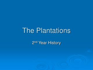 The Plantations