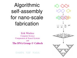Algorithmic  self-assembly  for nano-scale fabrication