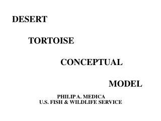 DESERT    TORTOISE      CONCEPTUAL        MODEL
