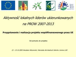 Aktywnosc lokalnych lider w ukierunkowanych  na PROW 2007-2013  Przygotowanie i realizacja projektu wsp lfinansowanego p