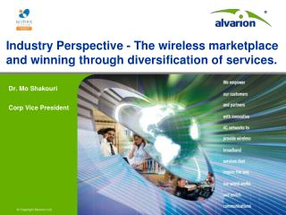 Industry Perspective - The wireless marketplace and winning through diversification of services.