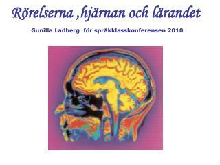 R relserna ,hj rnan och l randet  Gunilla Ladberg  f r spr kklasskonferensen 2010