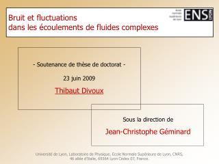 Bruit et fluctuations  dans les  coulements de fluides complexes