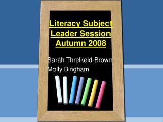 Literacy Subject Leader Session Autumn 2008