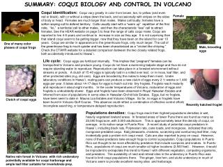 SUMMARY: COQUI BIOLOGY AND CONTROL IN VOLCANO