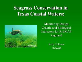 Seagrass Conservation in  Texas Coastal Waters: