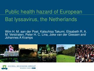 Public health hazard of European Bat lyssavirus, the Netherlands