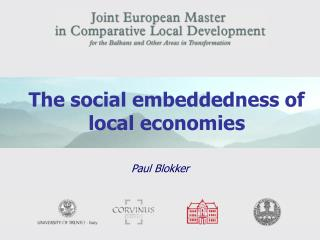 The social embeddedness of local economies