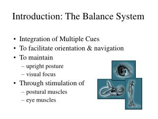 Introduction: The Balance System