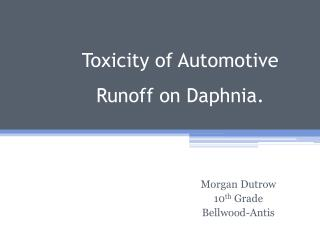 Toxicity of Automotive Runoff on Daphnia.