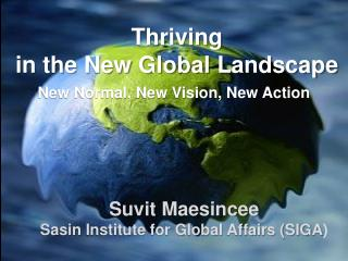 Thriving  in the New Global Landscape