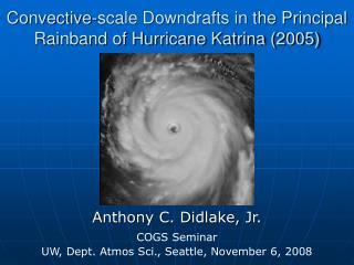 Convective-scale Downdrafts in the Principal Rainband of Hurricane Katrina 2005