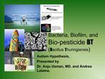 Bacteria, Biofilm, and Bio-pesticide BT  Bacillus Thuringiensis