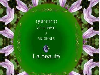 QUINTINO VOUS  INVITE A VISIONNER   La beaut