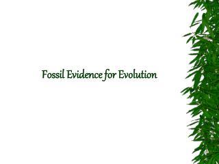 Fossil Evidence for Evolution