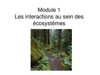 Module 1  Les interactions au sein des  cosyst mes