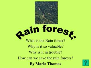 What is the Rain forestWhy is it so valuableWhy is it in troubleHow can we save the rain forestsBy Marla Thomas
