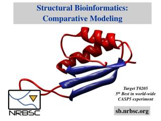 Structural Bioinformatics: Comparative Modeling